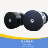 供应尼龙输送带厂家生产高耐磨尼龙输送带 耐热耐高温防滑输送带