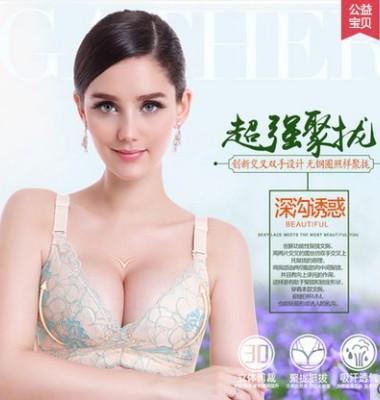 调整型大码文胸图片/调整型大码文胸样板图 (2)