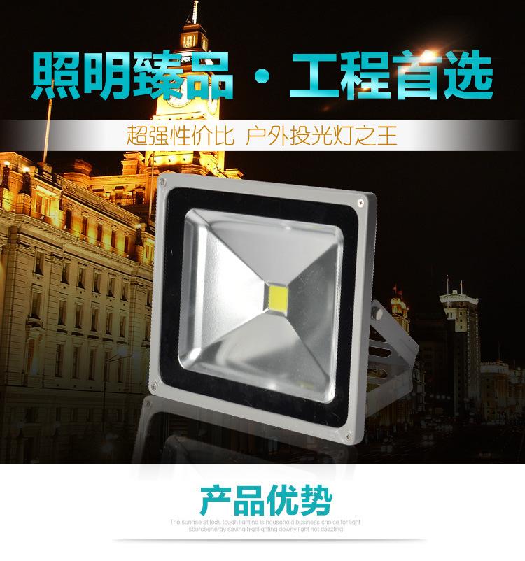 供应LED户外防水投光灯100W 照墙灯 户外投光灯 草坪照树灯 水底投光灯投射灯