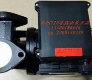 单相220V导热油泵370W图片