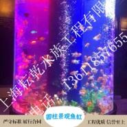 供应圆柱景观鱼缸 亚克力圆柱鱼缸 圆柱生态鱼缸 微景观鱼缸