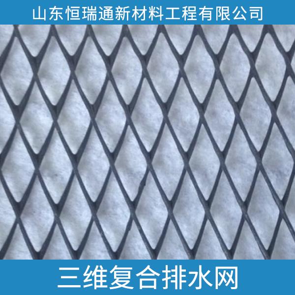 供应三维复合排水网 专业复合排水网加工厂 三维复合排水网加工定做 山东三维复合排水网