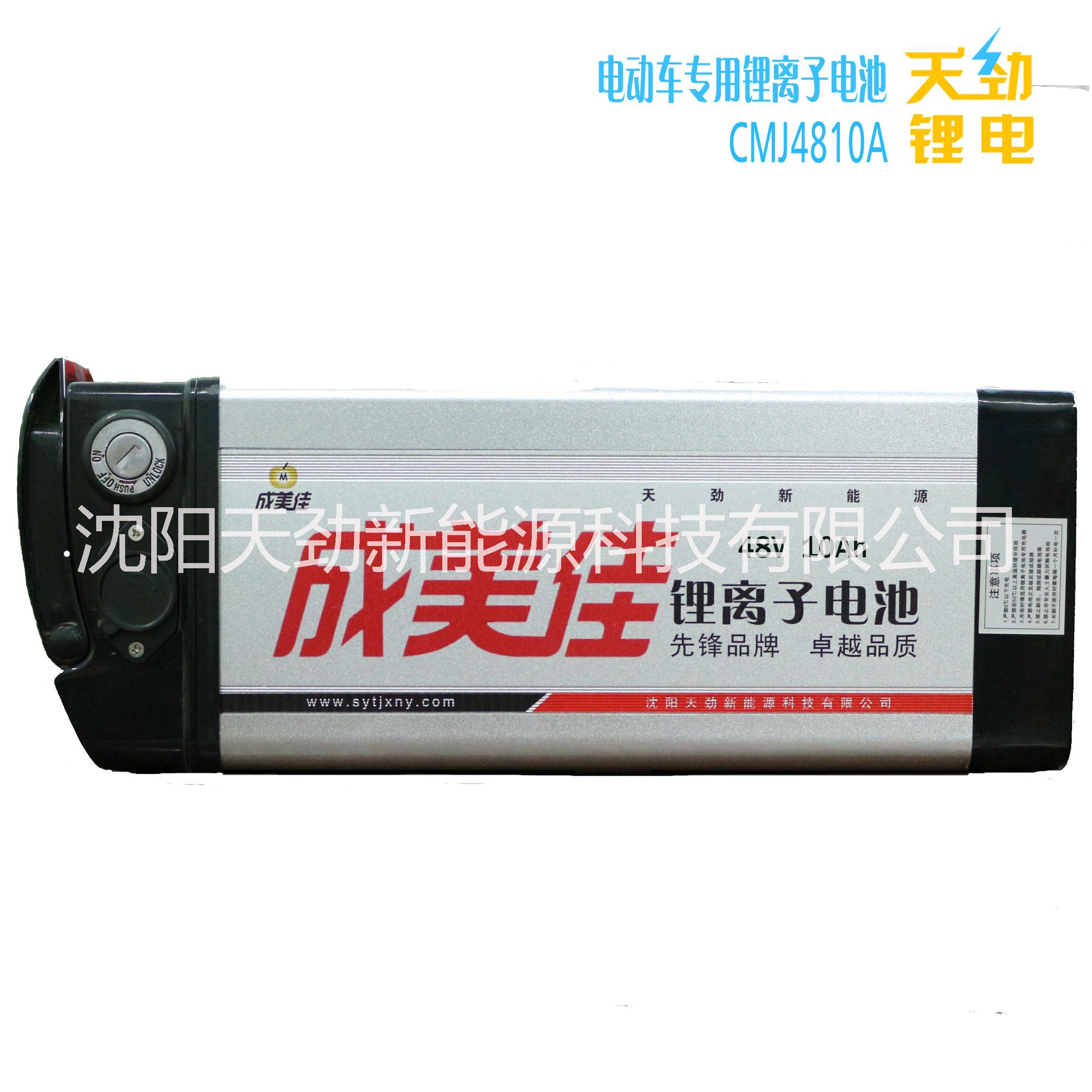 供应48V锂电池 沈阳厂家直供