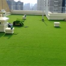 供应用于美观绿化的便宜草坪批发北京假草坪批发批发