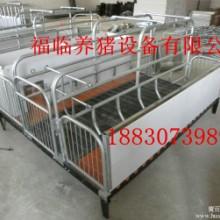 供应用于繁殖器具的专业养猪设备高级母猪产床批发