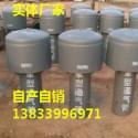 工业罩型通气帽DN600图片