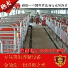 供应用于繁殖器具的母猪产床  母猪分娩床河北泊头母猪产床厂家养猪设备