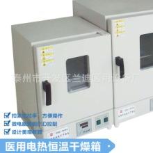 供应医用电热恒温干燥箱数显恒温干燥箱电热恒温鼓风干燥箱批发