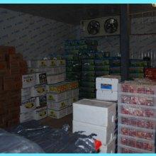 广西果蔬保鲜冷库建造价格|广西果蔬保鲜冷库造价|广西果蔬保鲜冷库多少钱