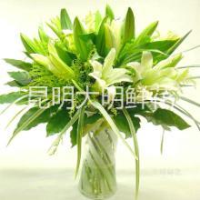 供应鲜花批发昆明香水百合家庭用花图片
