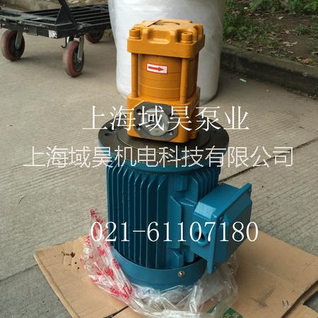供应剪板机NT5-G80F齿轮泵