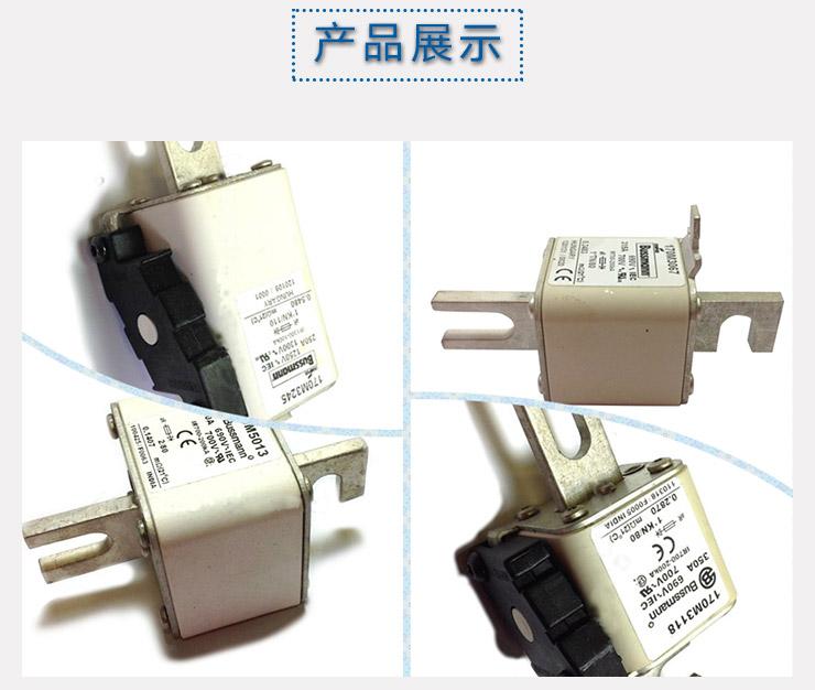 供应170M2678美国巴斯曼-熔断器价钱-熔断器供应商