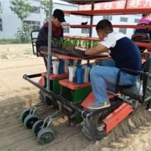 供应新疆玉米苗移栽种植就选田耐尔玉米专用移栽机批发