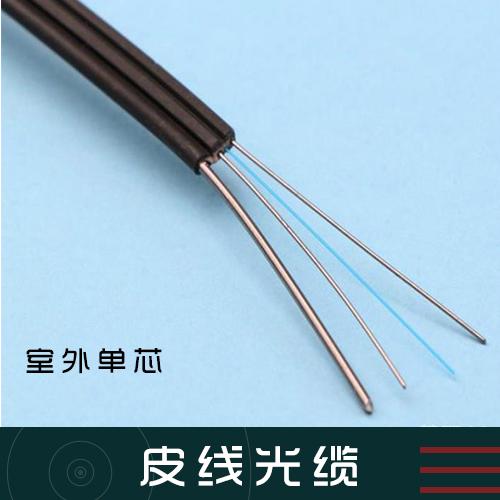 皮线光缆 单芯皮线光缆 蝶型皮线光缆 室内皮线光缆 双芯皮线光缆 两芯皮线光缆