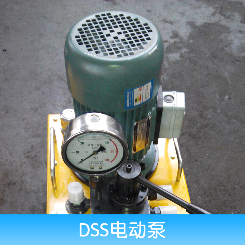 DSS电动泵 便捷式电动泵 液压电动泵 微型电动泵 超高压电动泵