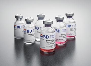 供应Matrigel基质胶低生长因子,无酚红 BD 356231 10ml 量大优惠 质量保证