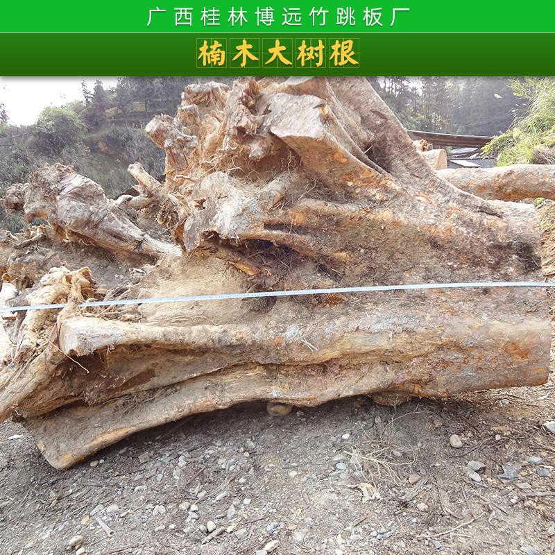 楠木大树根产品 大树根原木 金丝楠木原木 楠木大树根木料 金丝楠木大