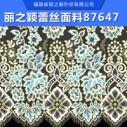 潮流的丽之颖蕾丝面料  蕾丝面料 蕾丝面料厂家直销 潮流的丽之颖蕾丝面料87647