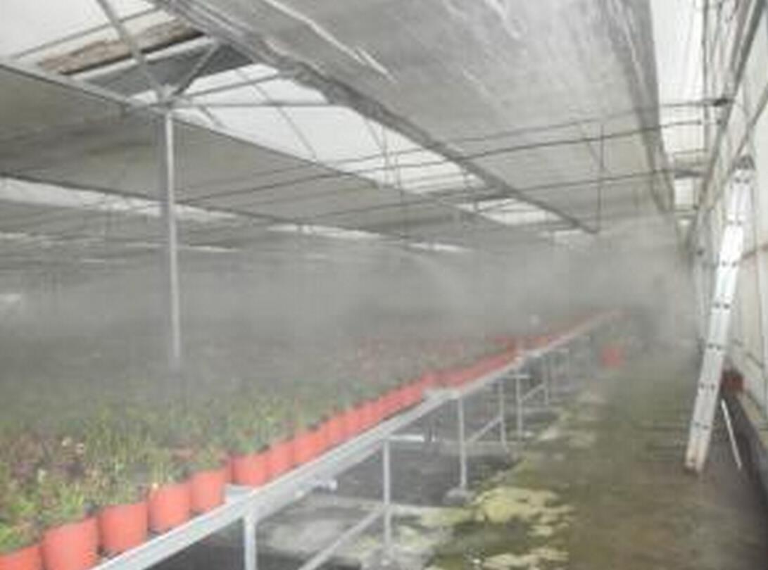 厂家直销食用菌喷雾加湿设备喷雾加湿直销食用菌喷雾加湿