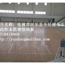 篮球馆木地板表面涂料(球场漆)