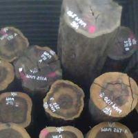 出售进口非洲原木铁木豆原木
