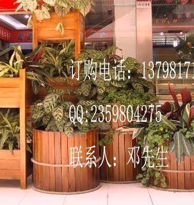 钢木组合花箱 大型道路花槽图片/钢木组合花箱 大型道路花槽样板图 (4)