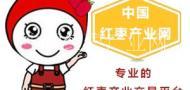 中国红枣产业网