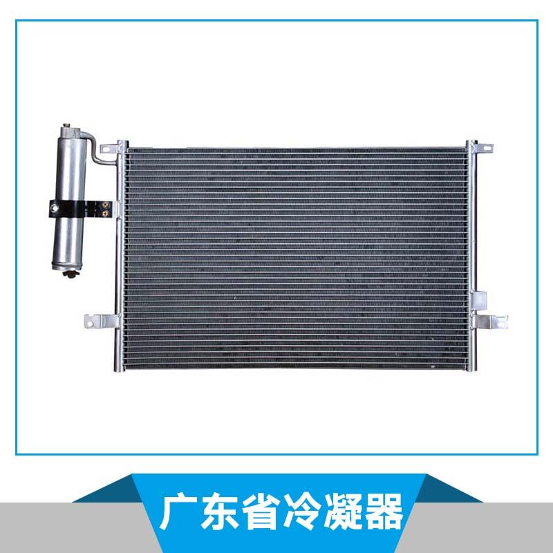 广东省冷凝器 支架式冷凝器 列管式冷凝器 蒸发式冷凝器 冷凝器风扇 微型冷凝器 玻璃冷凝器