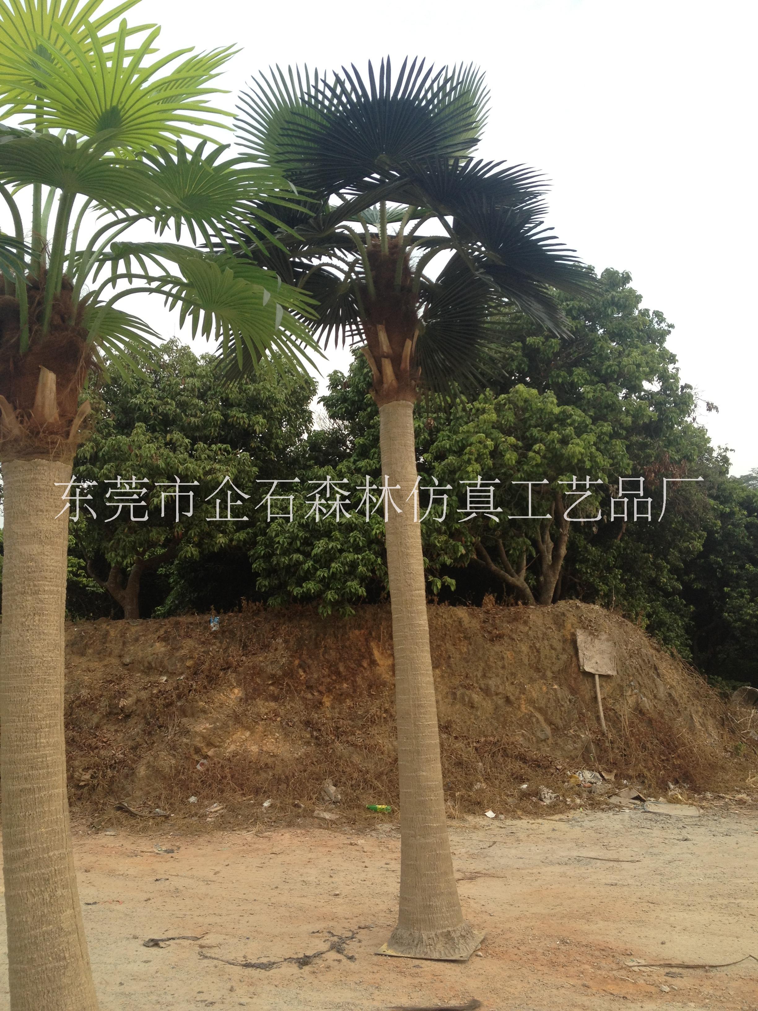 仿真棕榈树厂家直销仿真老人葵玻璃钢材质大树干可用10年扇葵树