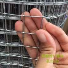 电焊网外墙保温铁丝网建筑网墙体抗裂网厂铁丝网直销批发