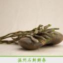 温州石斛鲜条产品 新鲜石斛鲜条批发 铁皮石斛鲜条供应 滋补石斛鲜条现货