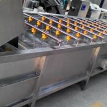 提供山东果蔬清洗分拣输送设备厂家及价格批发