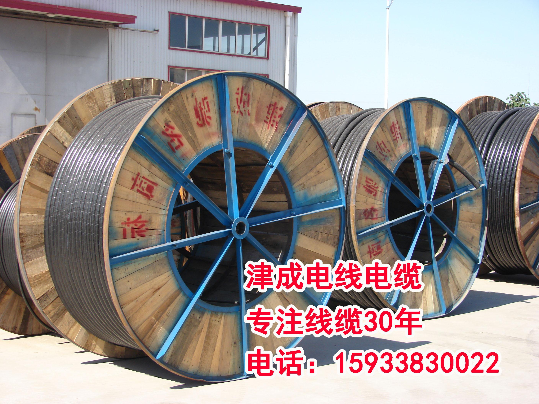 衡水津成 衡水津成电线电缆,阻燃耐火电缆,津成专注线缆30年