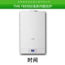 TME F时间标准系列挂壁炉 智能防冻挂壁炉热水器 家用供暖热水两用挂壁炉批发