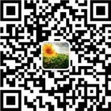 山东自产红富士苹果福建烟台苹果价格 红富士苹果价格
