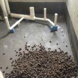 苏州昆山建筑陶粒,轻质页岩陶粒