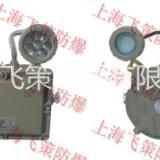 防爆应急灯BCJ-B 上海飞策防爆LED光源 价格