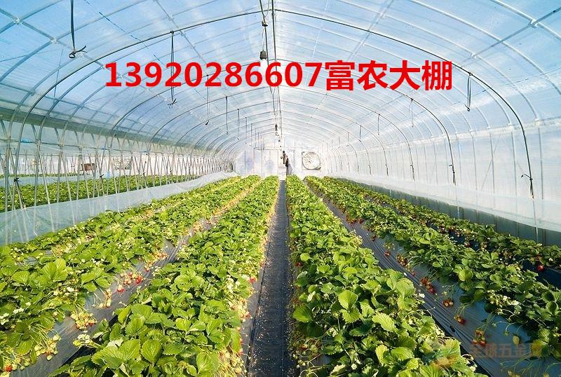 批发温室大棚管 蔬菜大棚管 热镀锌管13920286607 批发温室大棚管 蔬菜大棚管 钢管