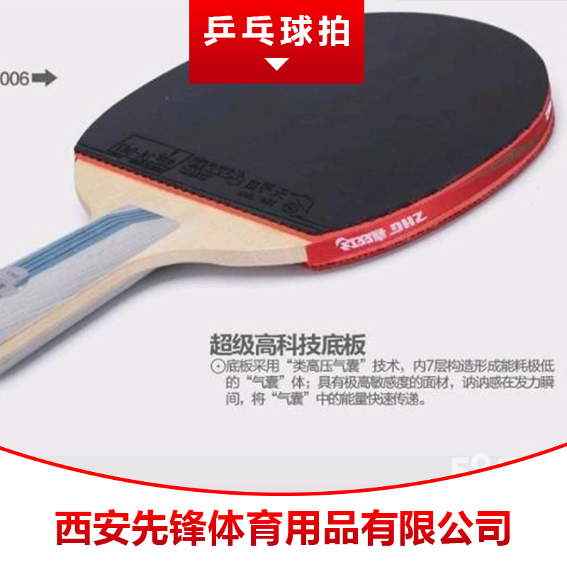 乒乓球拍图片/乒乓球拍样板图 (4)