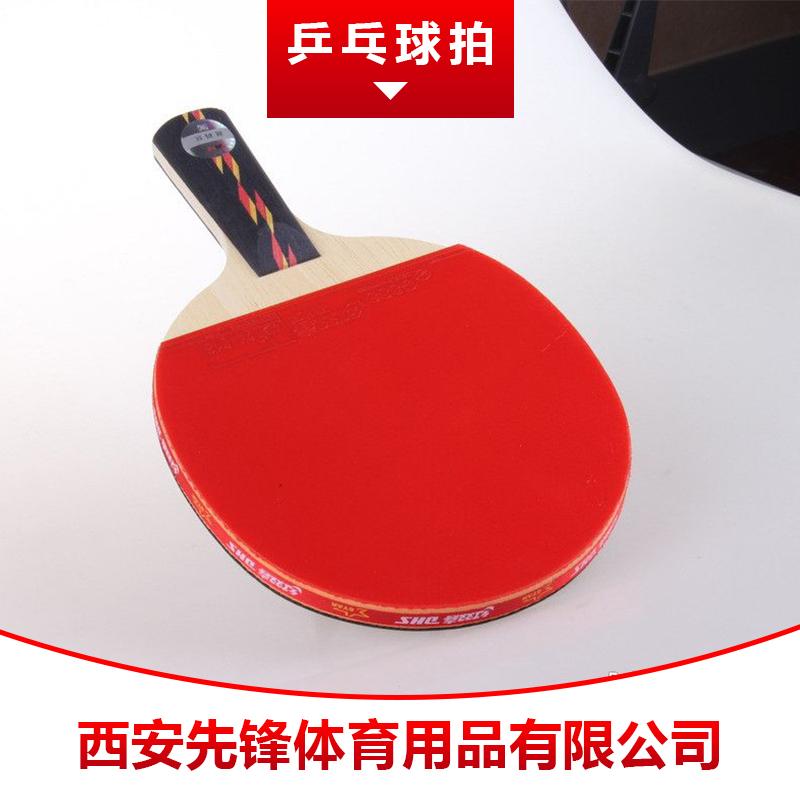 乒乓球拍图片/乒乓球拍样板图 (1)