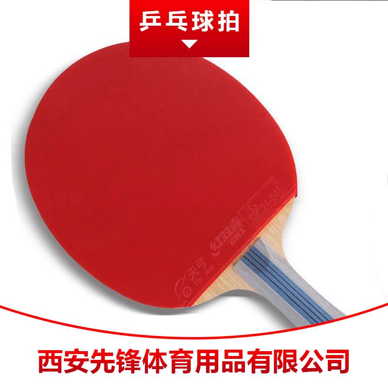 乒乓球拍图片/乒乓球拍样板图 (2)
