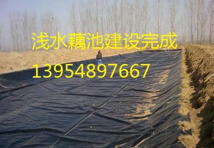 新疆养殖场沼气池防渗膜,藕池防渗膜,短丝复合土工膜,透水土工布