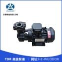 TDR 高温泵浦图片
