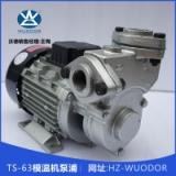 TS-63模温机泵浦 TS-63 0.37KW高温油泵 热水循环泵 模温机水泵