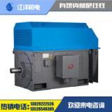 供应东莞环球YKK355三相异步高压电机 防爆电机高压电机