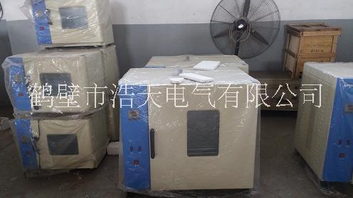 供应  实验室设备干燥箱101系列电热鼓风干燥箱 实验室设备干燥箱电炉丝干燥箱