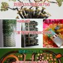 PCB汽车模块板图片