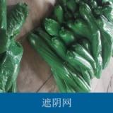 高密度聚乙烯绿色遮阴网 耐老化防辐射农用保温增湿遮阳网/遮光网