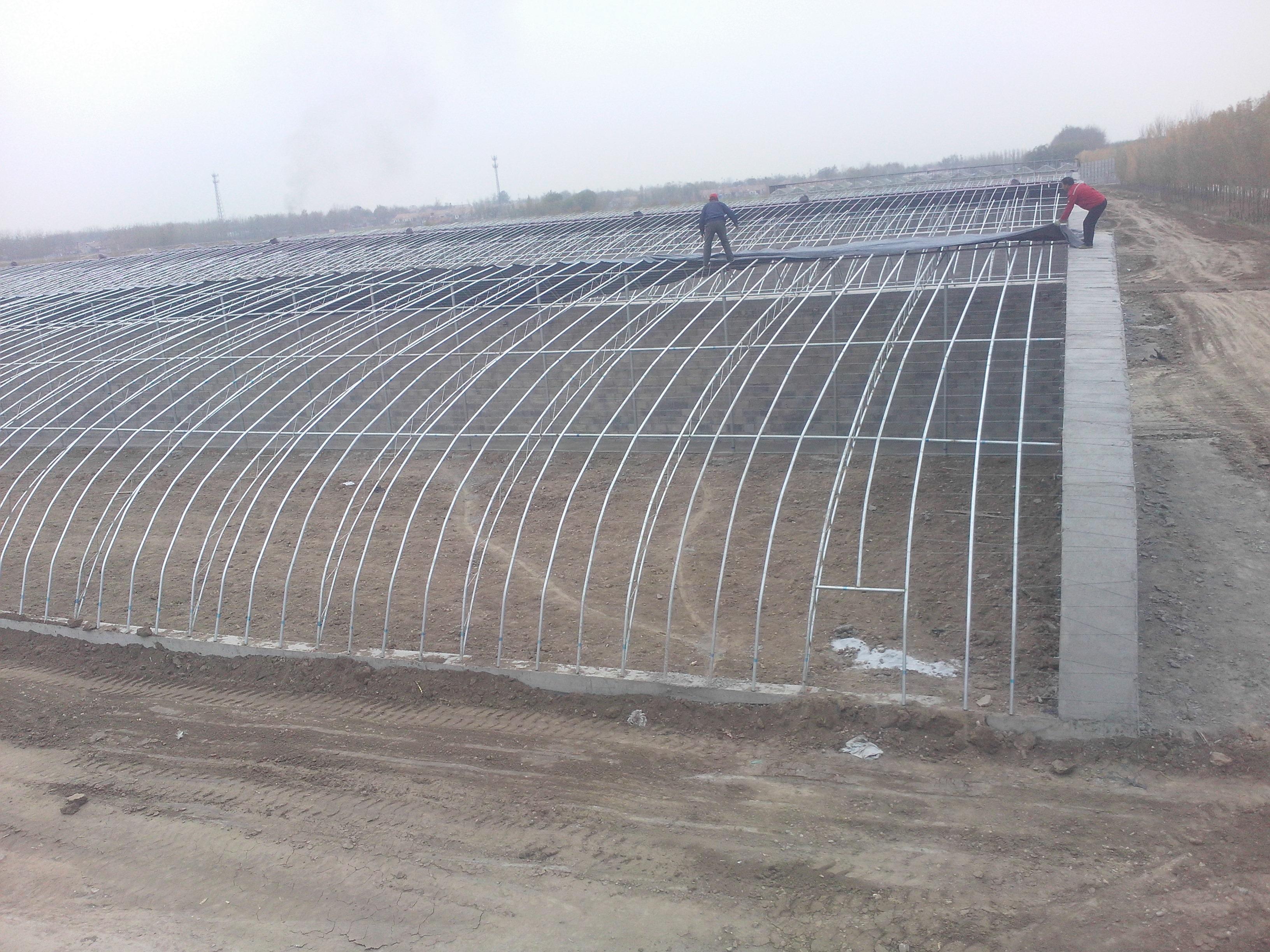 北京大棚骨架批发大棚建造大棚厂家