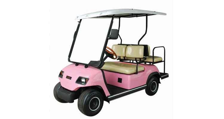 高尔夫观光车图片/高尔夫观光车样板图 (3)